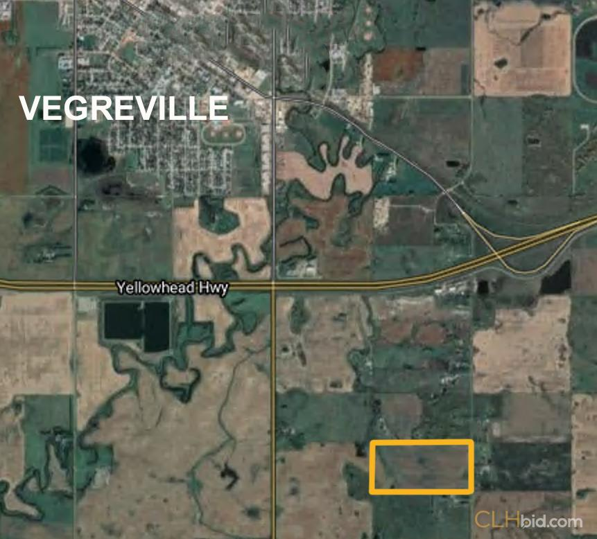 Pictor of The Southern Eighty - Vegreville